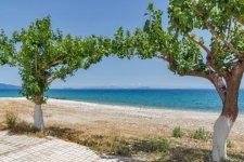 Poros-Beach-Kefalonia-720x480.jpg